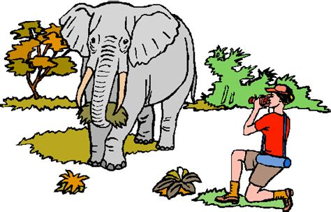 Elephants eating clipart 20 free Cliparts   Download