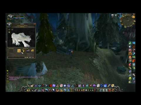 Build Guide review: World of warcraft pet talents